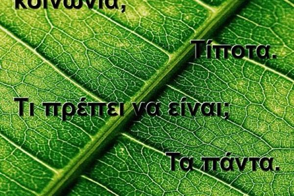 afisa-terra-verde446537C1-99D0-8BC6-B0C5-FEFB78103E09.jpg